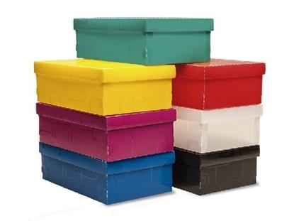 Imagen de Caja organizadora zapato 28x17x12cm Dello
